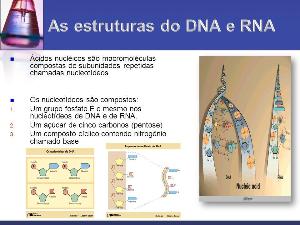 Ácidos nucléicos são macromoléculas compostas de subunidades repetidas chamadas nucleotídeos. Os nucleotídeos são compostos: 1. Um grupo fosfato.É o m