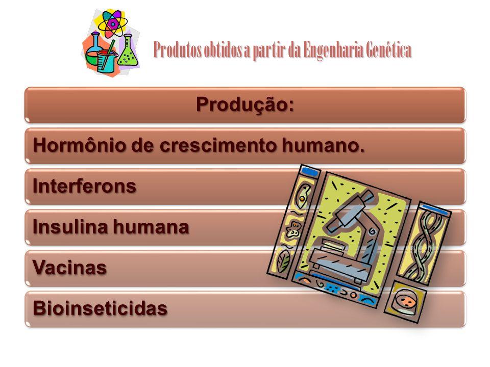Produtos obtidos a partir da Engenharia Genética Produção: Hormônio de crescimento humano. Interferons Insulina humana Vacinas Bioinseticidas