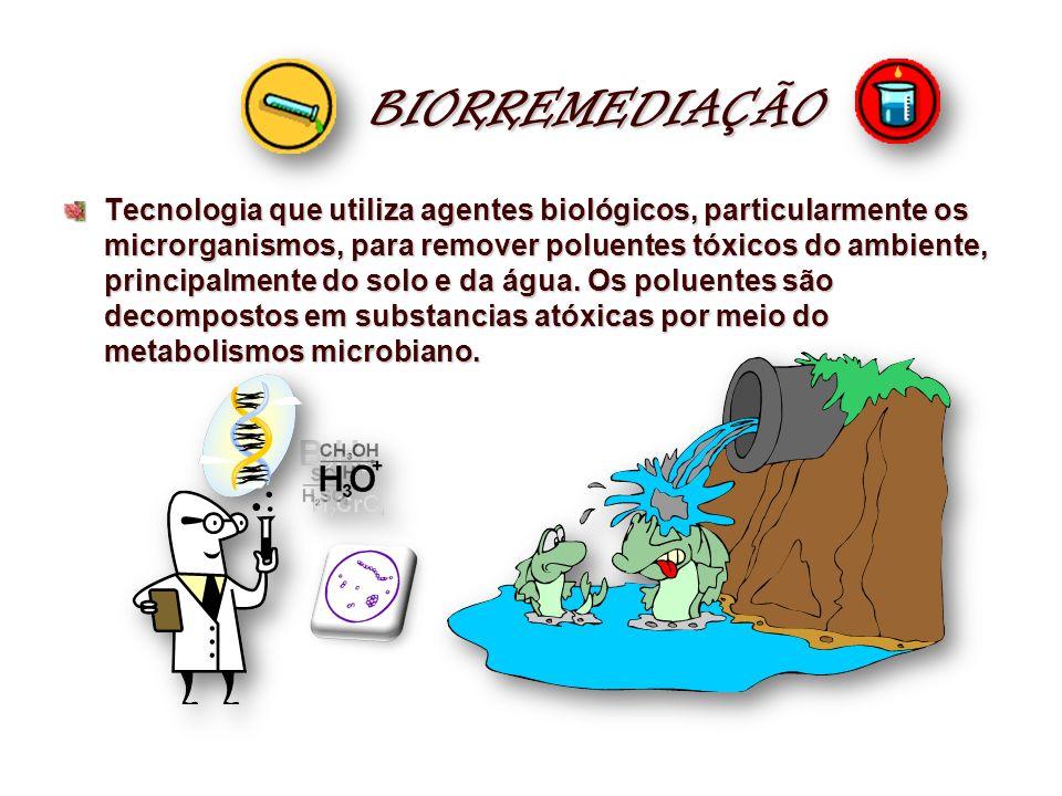 BIORREMEDIAÇÃO Tecnologia que utiliza agentes biológicos, particularmente os microrganismos, para remover poluentes tóxicos do ambiente, principalment
