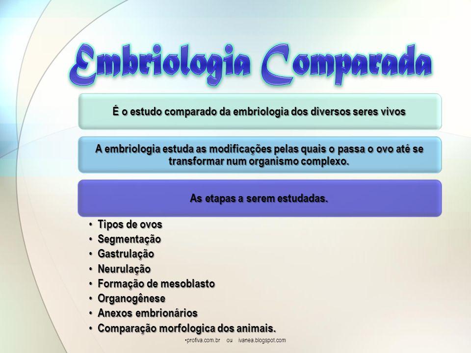 É o estudo comparado da embriologia dos diversos seres vivos A embriologia estuda as modificações pelas quais o passa o ovo até se transformar num org