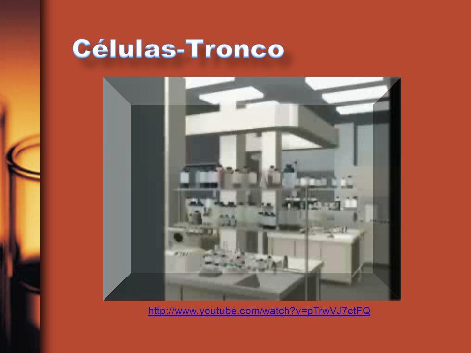 Células Adultas São encontradas: medula, sangue, fígado, polpa dentária; e cordão umbilical e placenta.São encontradas: medula, sangue, fígado, polpa dentária; e cordão umbilical e placenta.