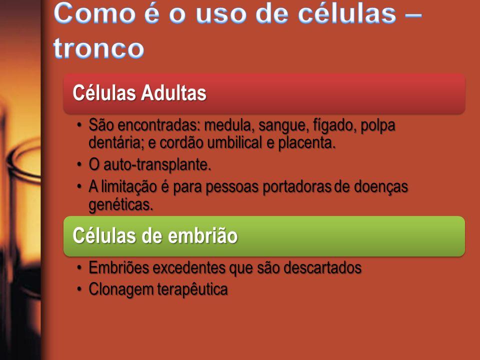 Células Adultas São encontradas: medula, sangue, fígado, polpa dentária; e cordão umbilical e placenta.São encontradas: medula, sangue, fígado, polpa