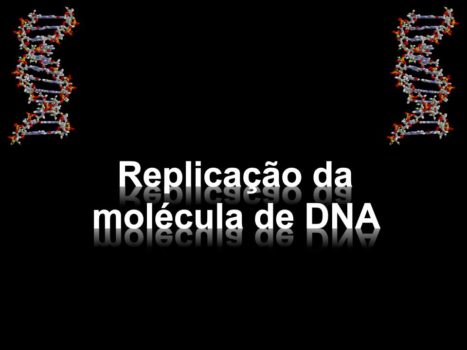 A síntese de um novo filamento de DNA ocorre a uma velocidade de cerca de 3.000 nucleotídeos por minuto.