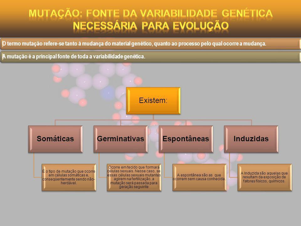 Existem: Somáticas É o tipo de mutação que ocorre em células somáticas e, conseqüentemente sendo não- herdável. Germinativas Ocorre em tecido que form