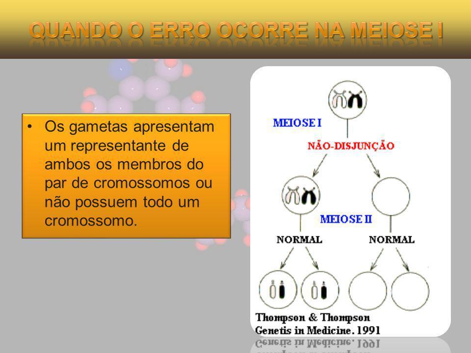 Os gametas apresentam um representante de ambos os membros do par de cromossomos ou não possuem todo um cromossomo.