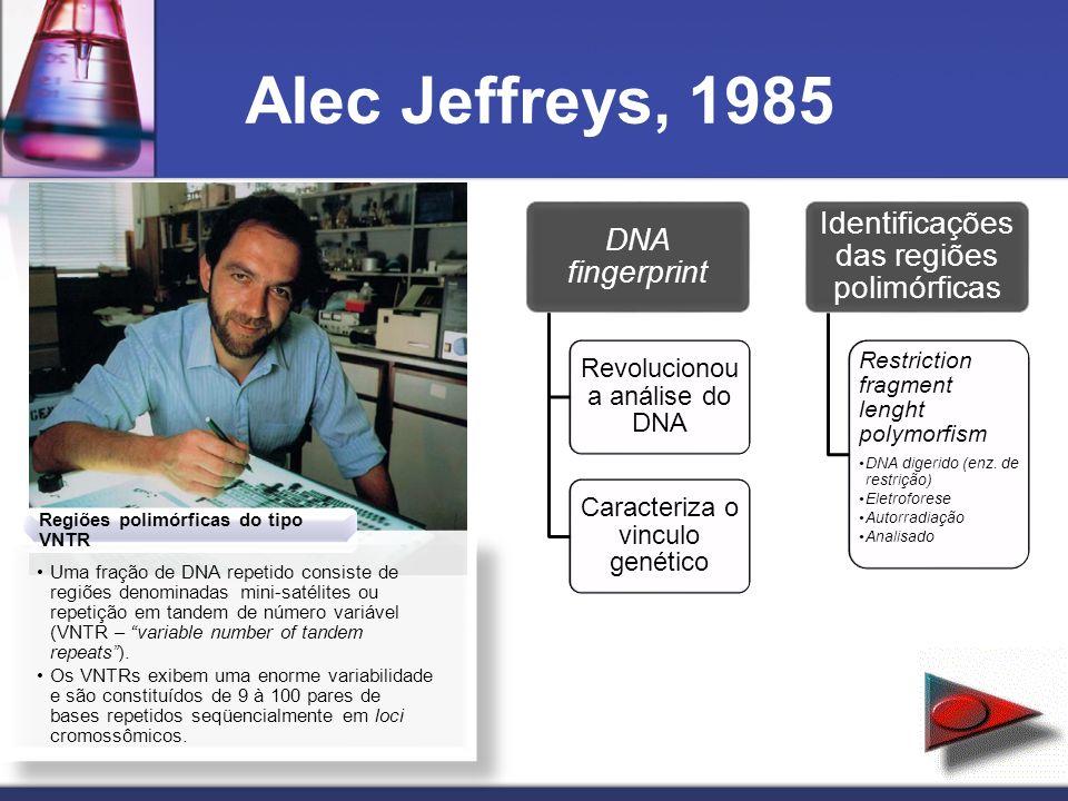 Alec Jeffreys, 1985 DNA fingerprint Revolucionou a análise do DNA Caracteriza o vinculo genético Identificações das regiões polimórficas Restriction f