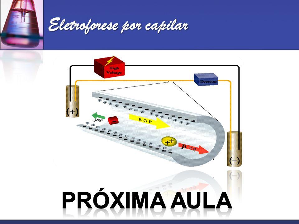 Eletroforese por capilar