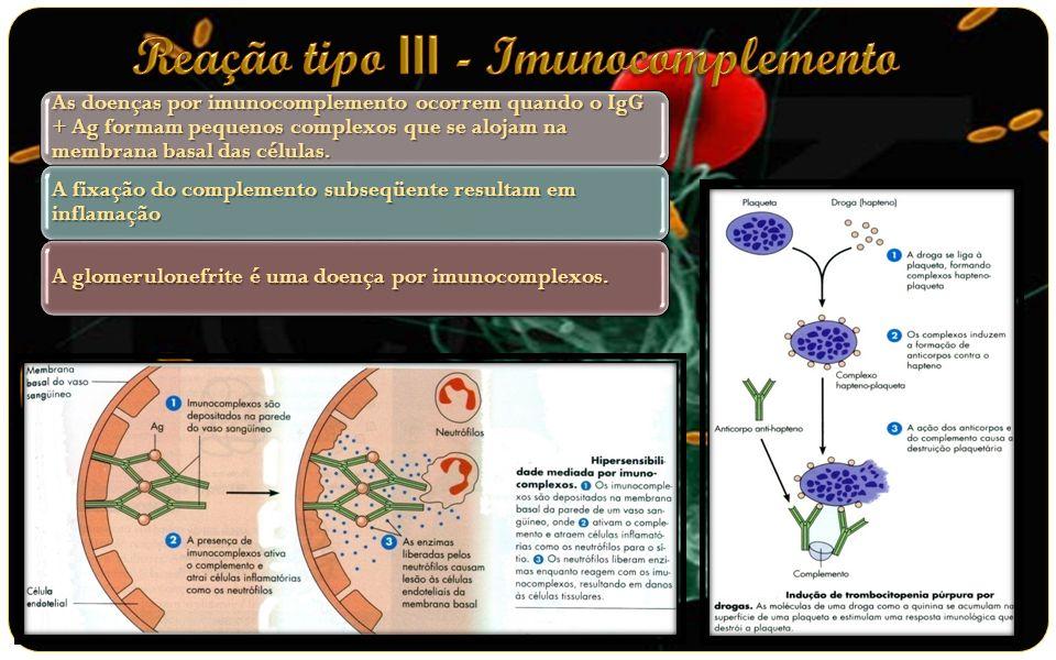 As reação de hipersensibilidade tardia se devem principalmente à proliferação das células T;As células T sensibilizadas por citocinas em resposta ao Ag;As citocinas atraem e ativam os macrófagos e inicial a lesão tecidual.