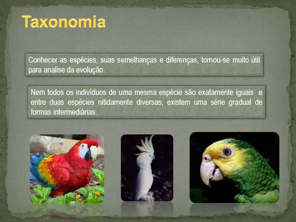 Conhecer as espécies, suas semelhanças e diferenças, tornou-se muito útil para analise da evolução. Nem todos os indivíduos de uma mesma espécie são e