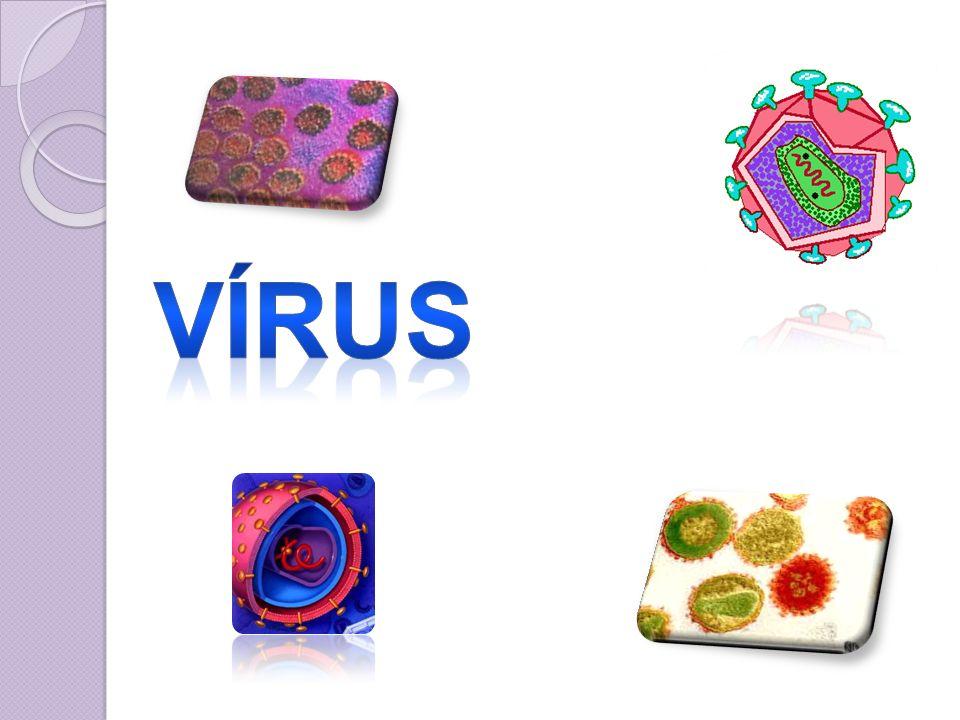 A existência do vírus foi reconhecida pela primeira vez há 100 anos; Demonstração da doença do mosaico do fumo.