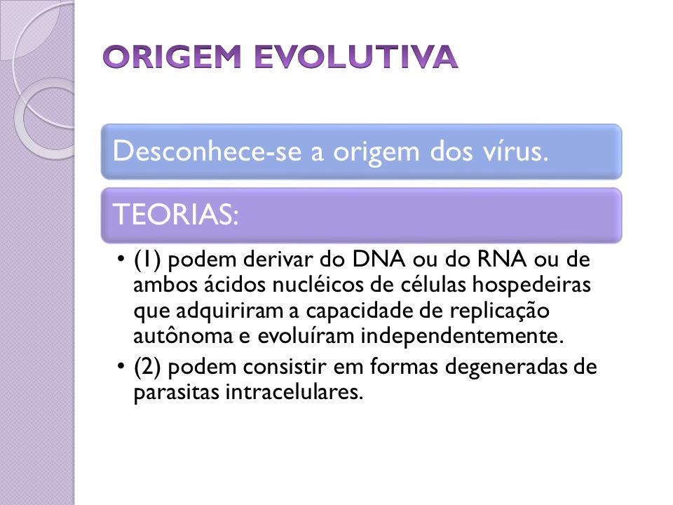 Desconhece-se a origem dos vírus.TEORIAS: (1) podem derivar do DNA ou do RNA ou de ambos ácidos nucléicos de células hospedeiras que adquiriram a capa