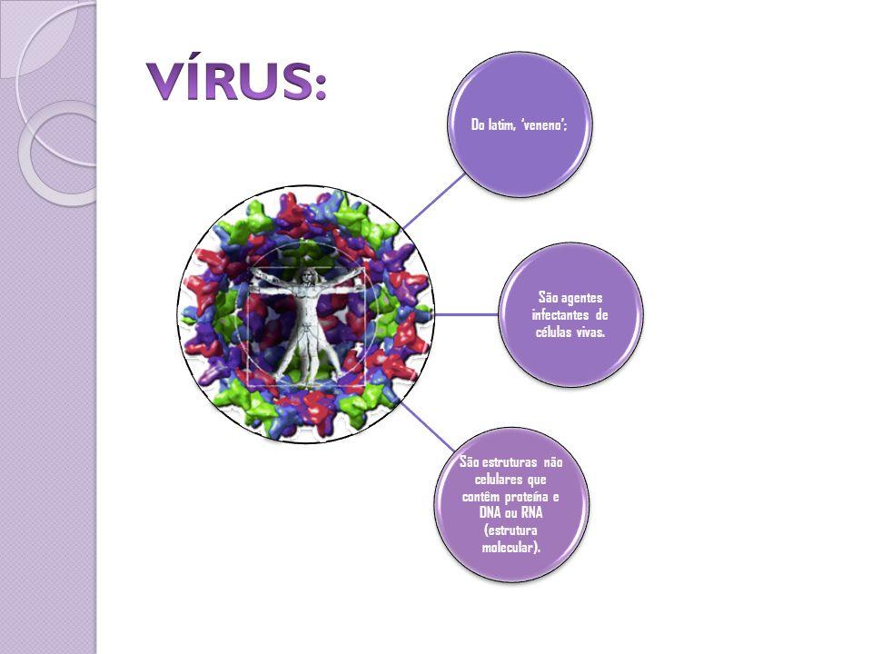 Do latim, veneno; São agentes infectantes de células vivas. São estruturas não celulares que contêm proteína e DNA ou RNA (estrutura molecular).