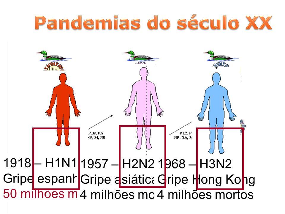 1918 – H1N1 Gripe espanhola 50 milhões mortos 1957 – H2N2 Gripe asiática 4 milhões mortos 1968 – H3N2 Gripe Hong Kong 4 milhões mortos