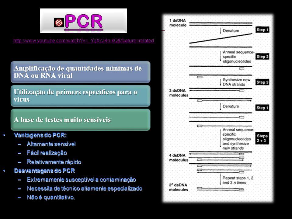 Amplificação de quantidades mínimas de DNA ou RNA viral Utilização de primers específicos para o vírus A base de testes muito sensíveis Vantagens do P