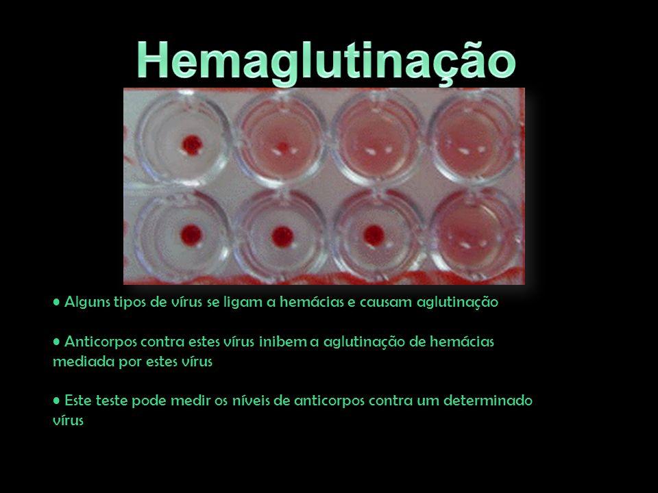 Alguns tipos de vírus se ligam a hemácias e causam aglutinação Anticorpos contra estes vírus inibem a aglutinação de hemácias mediada por estes vírus