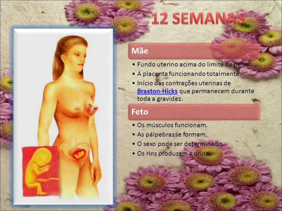 Lá pela metade da gravidez, às vezes até antes, é possível notar que os músculos do útero deixam a barriga dura, o que dura de 30 a 60 segundos.