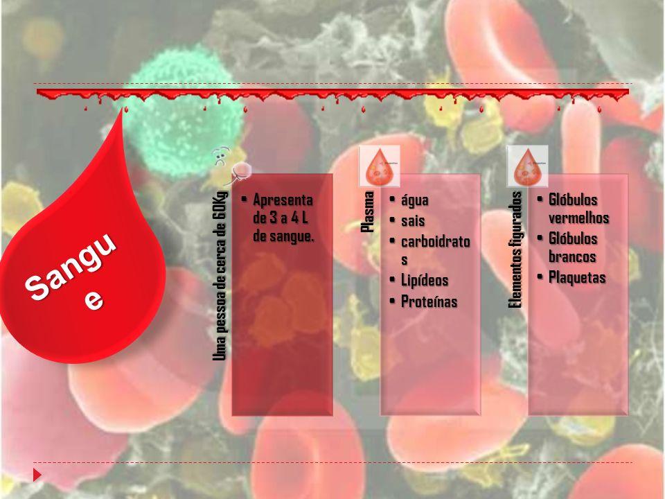 Sangu e Uma pessoa de cerca de 60Kg Apresenta de 3 a 4 L de sangue. Apresenta de 3 a 4 L de sangue.Plasma água água sais sais carboidrato s carboidrat