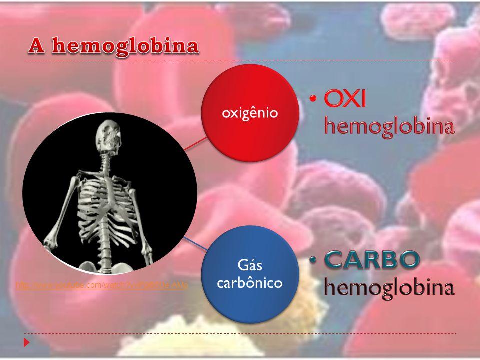 oxigênio Gás carbônico http://www.youtube.com/watch?v=PgI80Ue-AMo