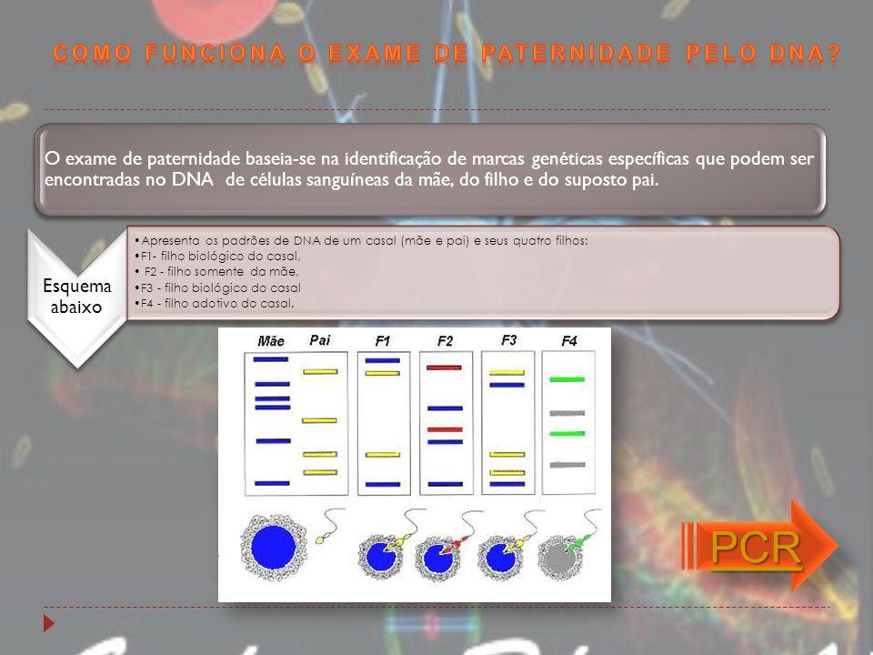 Esquema abaixo Apresenta os padrões de DNA de um casal (mãe e pai) e seus quatro filhos: F1- filho biológico do casal, F2 - filho somente da mãe, F3 -