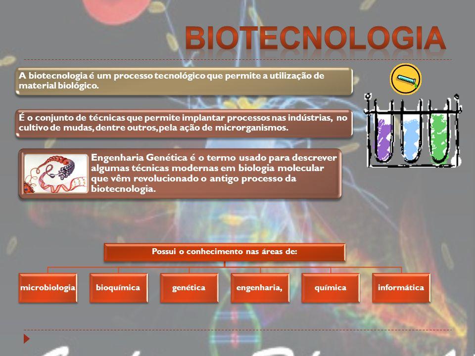 Tanto o melhoramento quanto a modificação genética são técnicas da biotecnologia, porém com diferenças entre si.