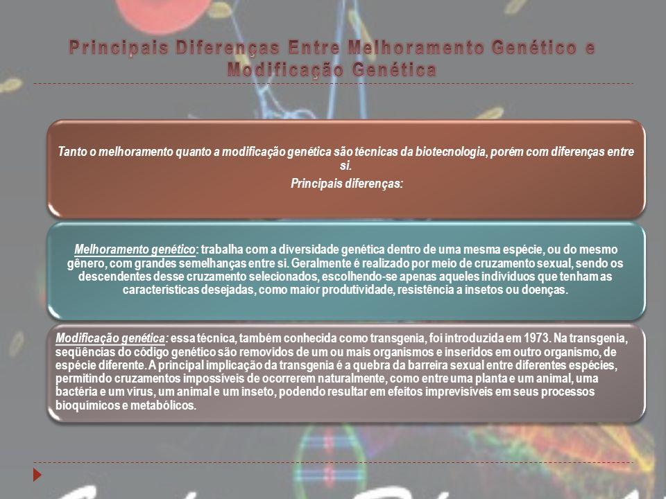 Tanto o melhoramento quanto a modificação genética são técnicas da biotecnologia, porém com diferenças entre si. Principais diferenças: Melhoramento g