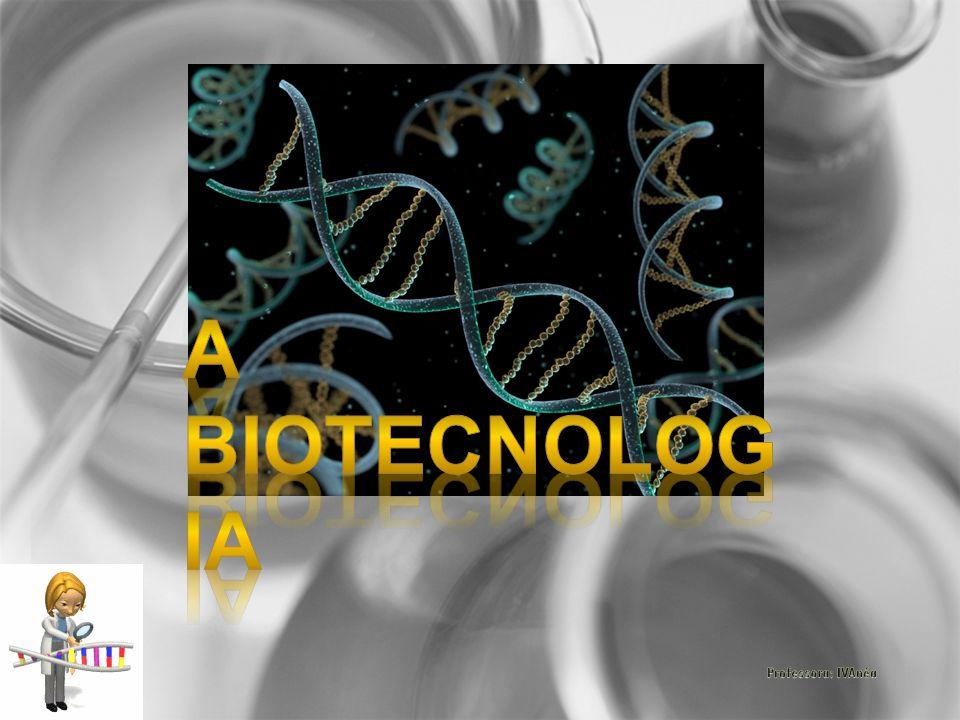 A biotecnologia é um processo tecnológico que permite a utilização de material biológico.