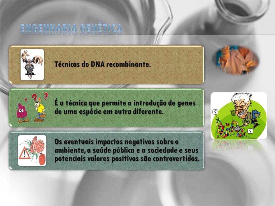 Modificação genética: É o processo no qual você retira um fragmento de DNA e coloca em outro organismo.