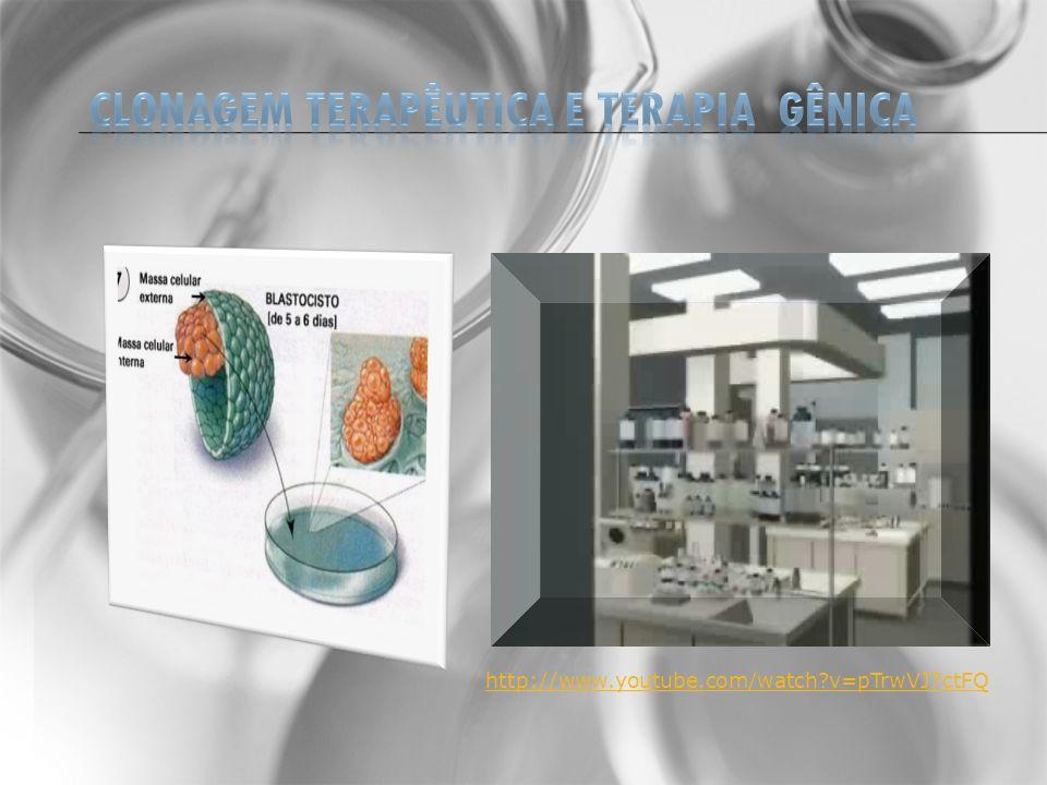 SUGESTÃO DE SITES http://www.bbc.co.uk/portuguese/static/especial/dna/genoma/stage_2.htm http://www.colegiosaofrancisco.com.br/alfa/animacoes-de-biologia/index-animacao-de- biologia.php http://ivanea.blogspot.comwww.profiva.com.br