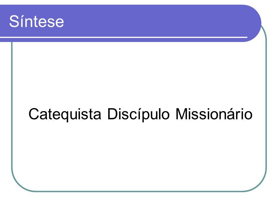 Síntese Catequista Discípulo Missionário