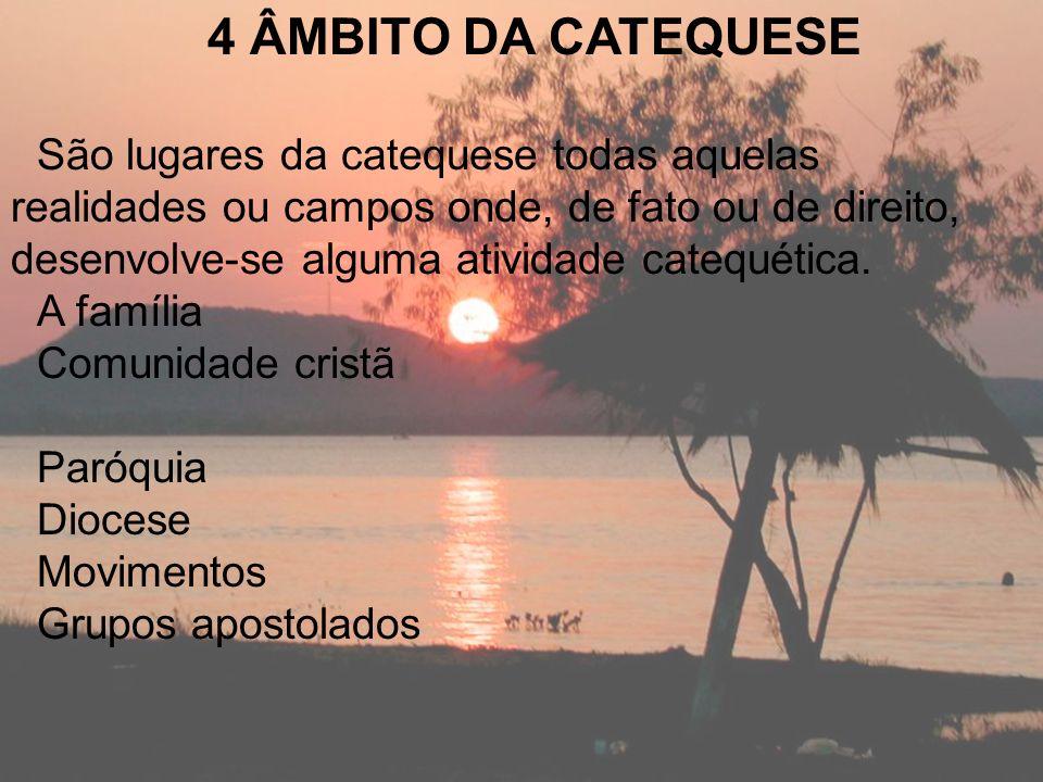 4 ÂMBITO DA CATEQUESE São lugares da catequese todas aquelas realidades ou campos onde, de fato ou de direito, desenvolve-se alguma atividade catequét
