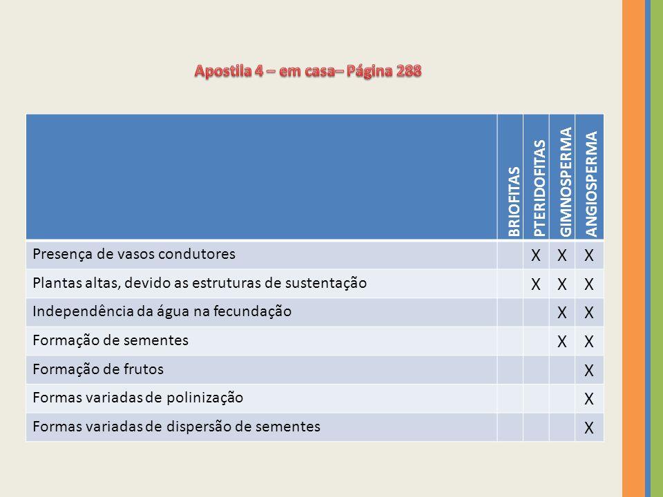 BRIOFITAS PTERIDOFITAS GIMNOSPERMA ANGIOSPERMA Presença de vasos condutores XXX Plantas altas, devido as estruturas de sustentação XXX Independência d