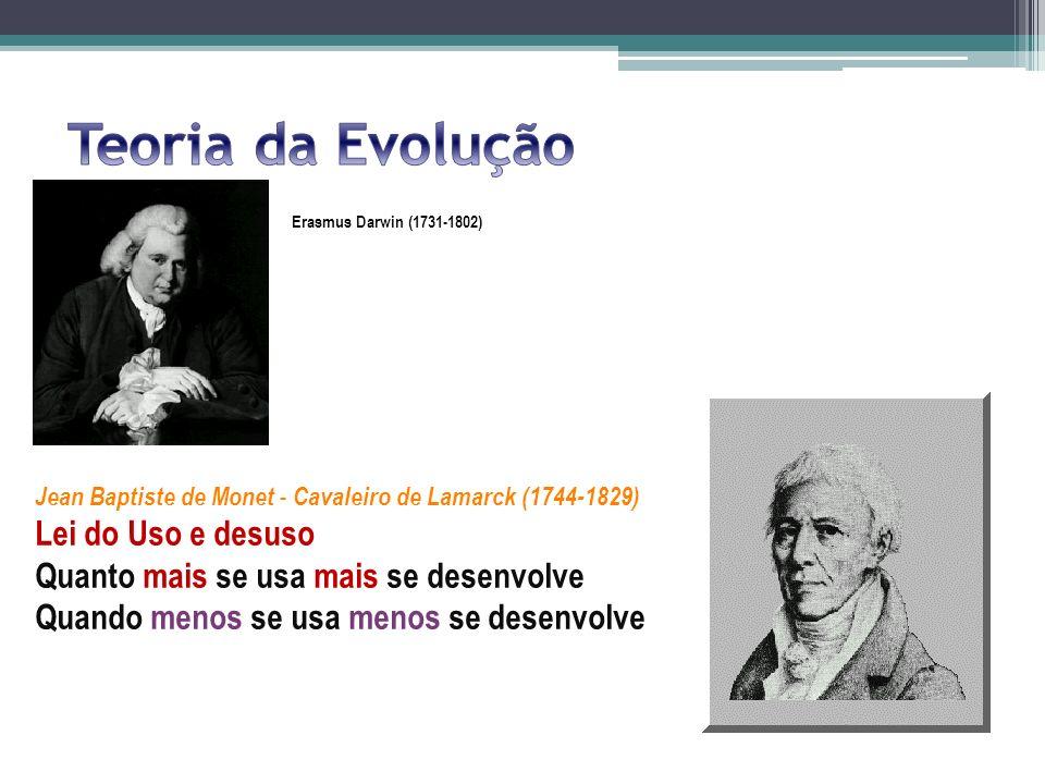 Erasmus Darwin (1731-1802) Jean Baptiste de Monet - Cavaleiro de Lamarck (1744-1829) Lei do Uso e desuso Quanto mais se usa mais se desenvolve Quando