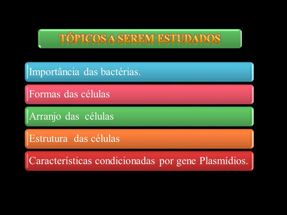 3 Importância das bactérias. Formas das células Arranjo das células Estrutura das células Características condicionadas por gene Plasmídios.