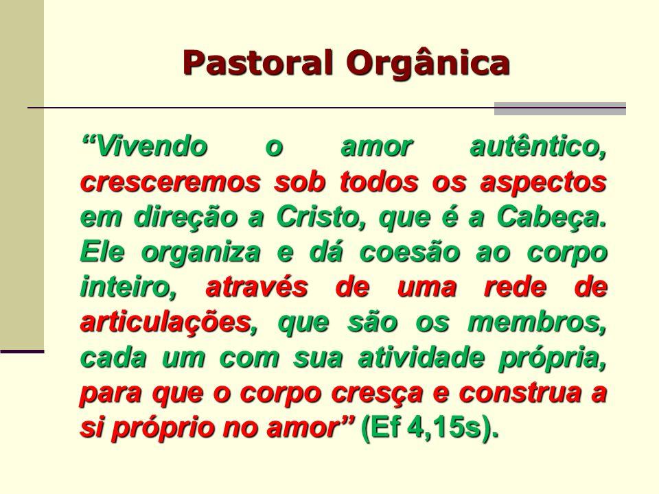 Pastoral Orgânica Vivendo o amor autêntico, cresceremos sob todos os aspectos em direção a Cristo, que é a Cabeça. Ele organiza e dá coesão ao corpo i