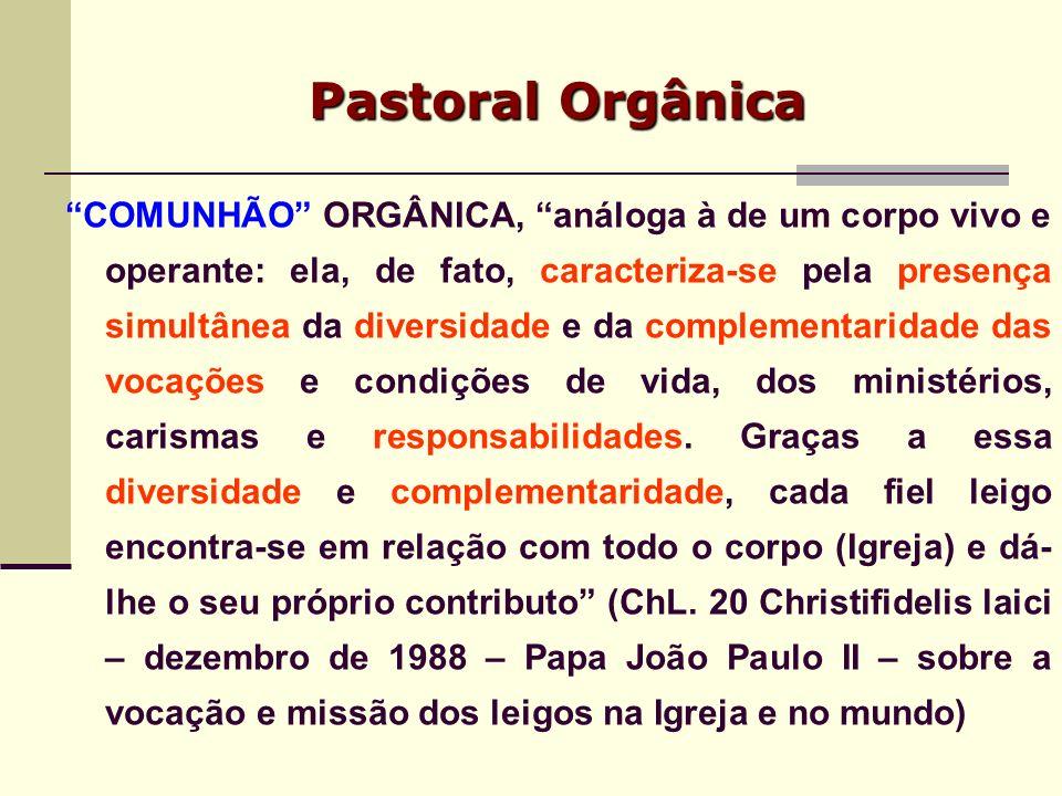 Pastoral Orgânica COMUNHÃO ORGÂNICA, análoga à de um corpo vivo e operante: ela, de fato, caracteriza-se pela presença simultânea da diversidade e da