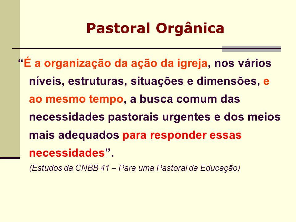 PASTORAL ORGÂNICA NO DA As comunidades, movimentos, grupos de vida, de oração e de reflexão da Palavra de Deus.