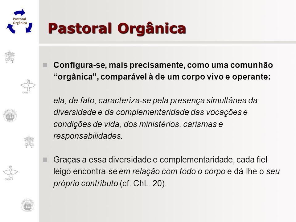 Pastoral Orgânica Configura-se, mais precisamente, como uma comunhão orgânica, comparável à de um corpo vivo e operante: ela, de fato, caracteriza-se