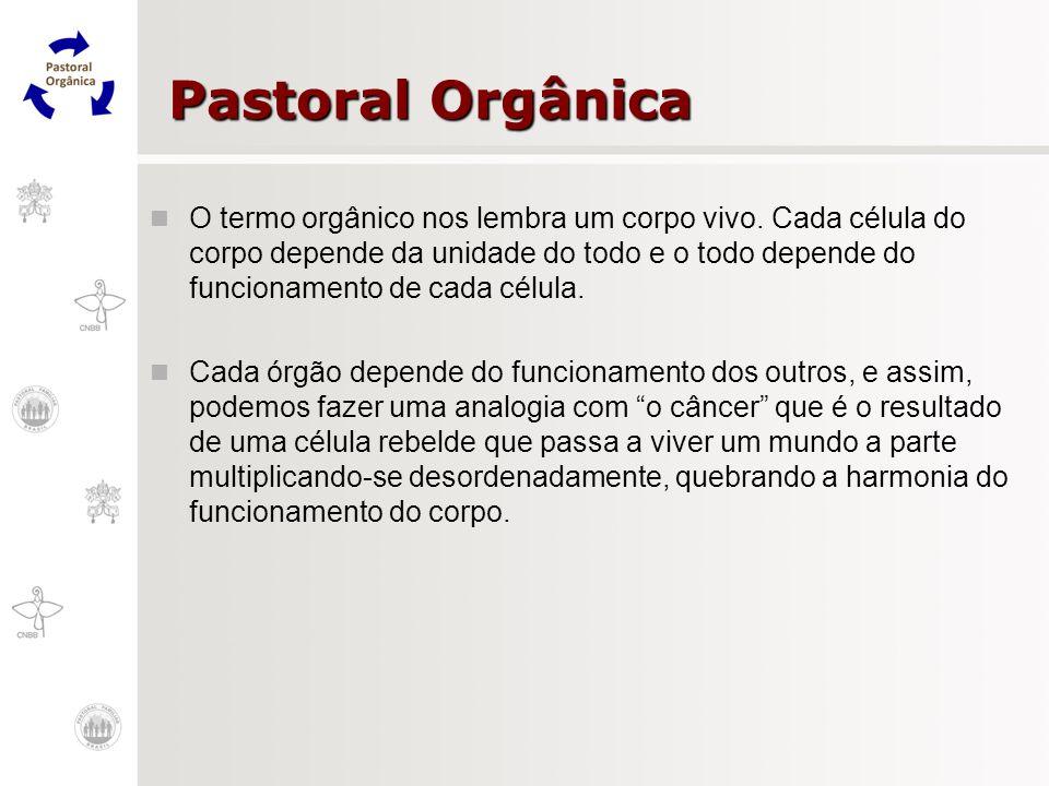 Pastoral Orgânica O termo orgânico nos lembra um corpo vivo. Cada célula do corpo depende da unidade do todo e o todo depende do funcionamento de cada