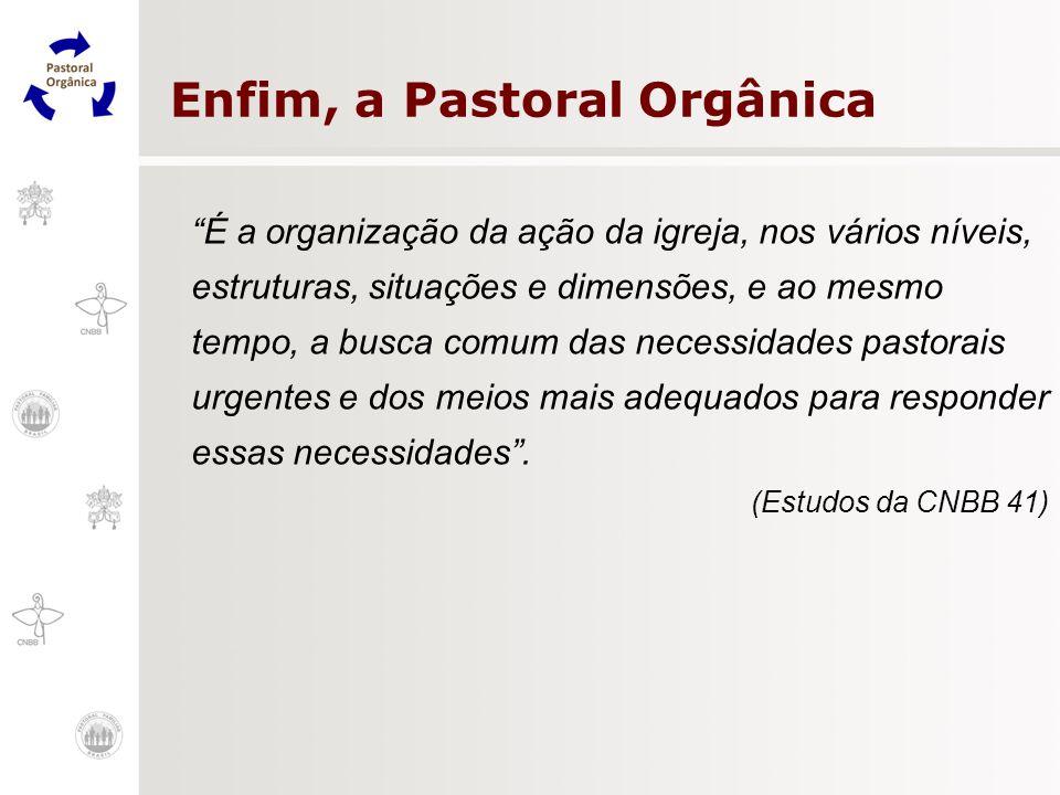 Enfim, a Pastoral Orgânica É a organização da ação da igreja, nos vários níveis, estruturas, situações e dimensões, e ao mesmo tempo, a busca comum da