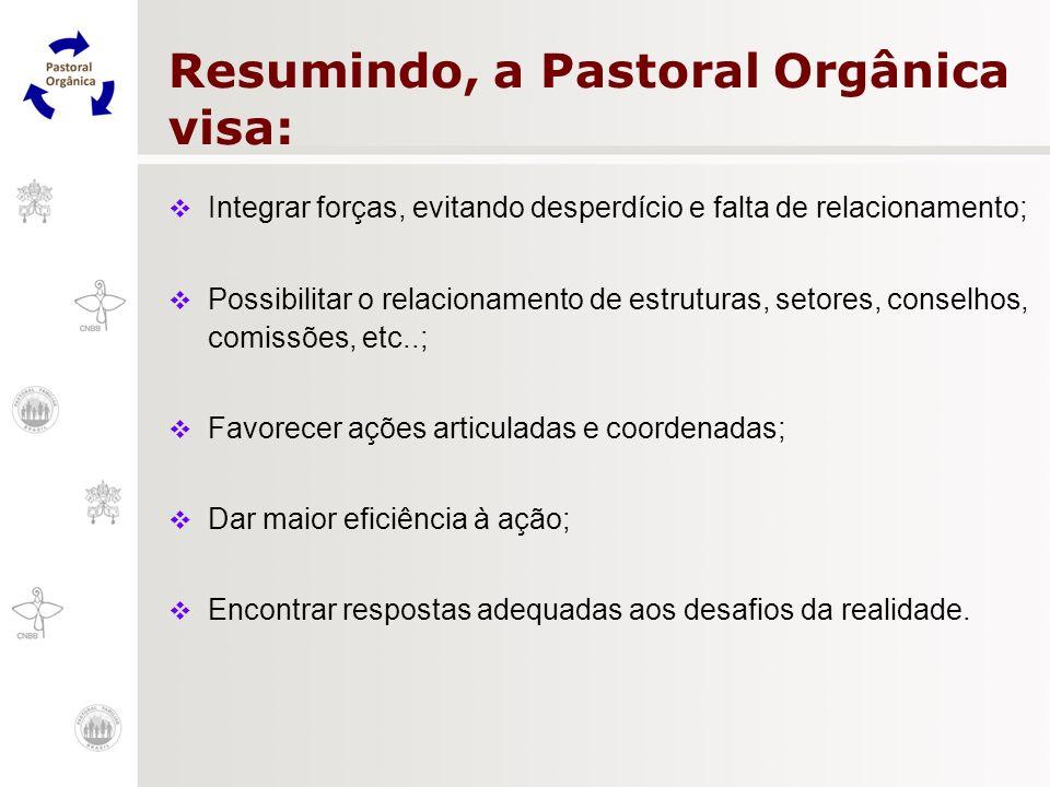 Resumindo, a Pastoral Orgânica visa: Integrar forças, evitando desperdício e falta de relacionamento; Possibilitar o relacionamento de estruturas, set