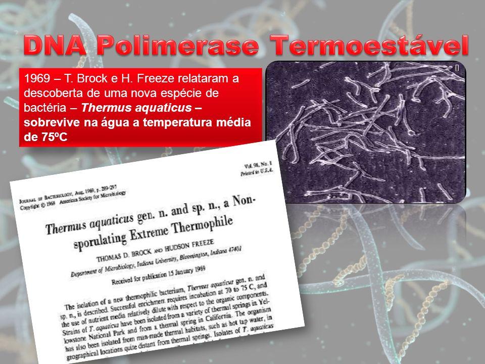 1969 – T. Brock e H. Freeze relataram a descoberta de uma nova espécie de bactéria – Thermus aquaticus – sobrevive na água a temperatura média de 75ºC