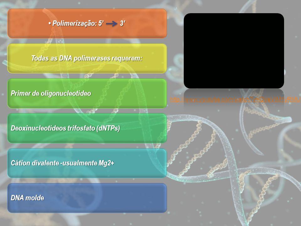 Polimerização: 5 3 Polimerização: 5 3 Todas as DNA polimerases requerem: Primer de oligonucleotídeo Deoxinucleotídeos trifosfato (dNTPs) Cátion divale