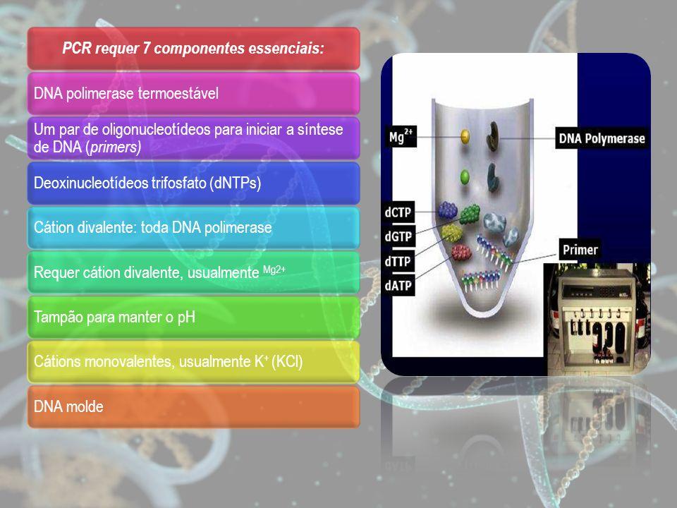 PCR requer 7 componentes essenciais: DNA polimerase termoestável Um par de oligonucleotídeos para iniciar a síntese de DNA ( primers) Deoxinucleotídeo