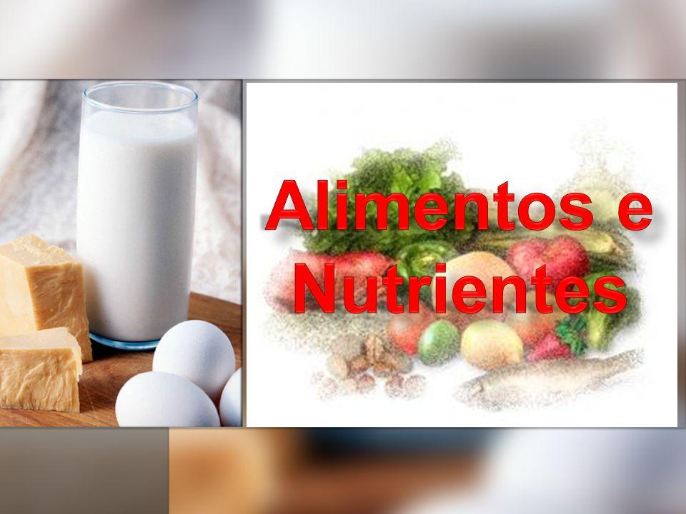 INTRODUÇÃO Alimentos São fontes de energia e de matéria prima para os seres vivos, a fim de que estes possam realizar suas atividades metabólicas.