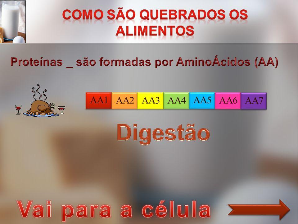 AA1 AA2 AA3 AA4 AA5 AA6 AA7