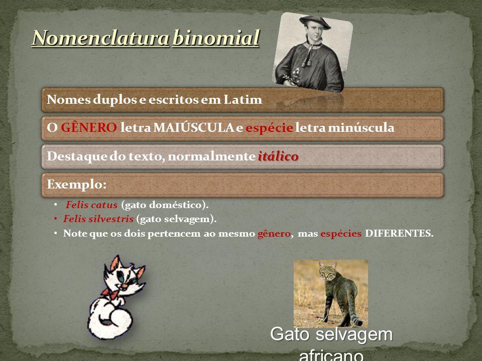 Nomes duplos e escritos em LatimO GÊNERO letra MAIÚSCULA e espécie letra minúscula itálico Destaque do texto, normalmente itálicoExemplo: Felis catus