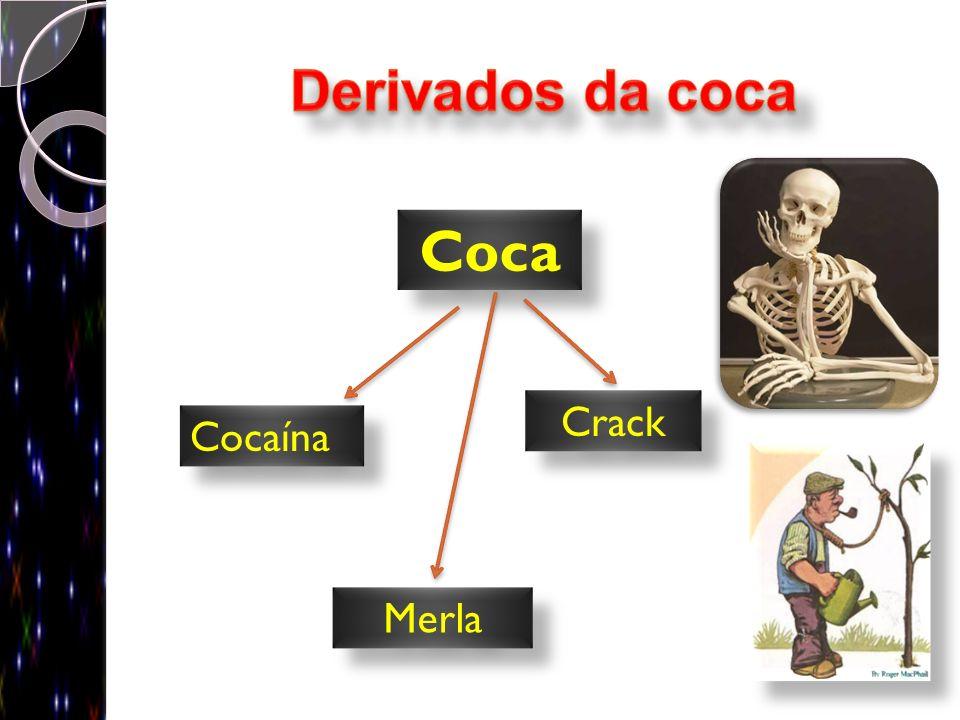 Coca Cocaína Crack Merla