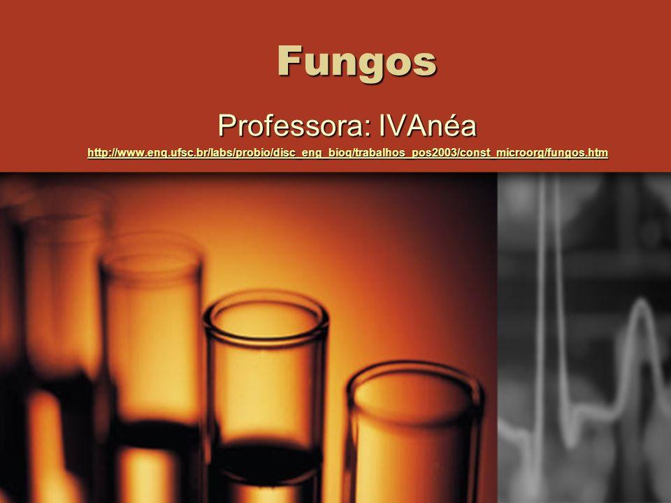 Fungos Professora: IVAnéa http://www.enq.ufsc.br/labs/probio/disc_eng_bioq/trabalhos_pos2003/const_microorg/fungos.htm