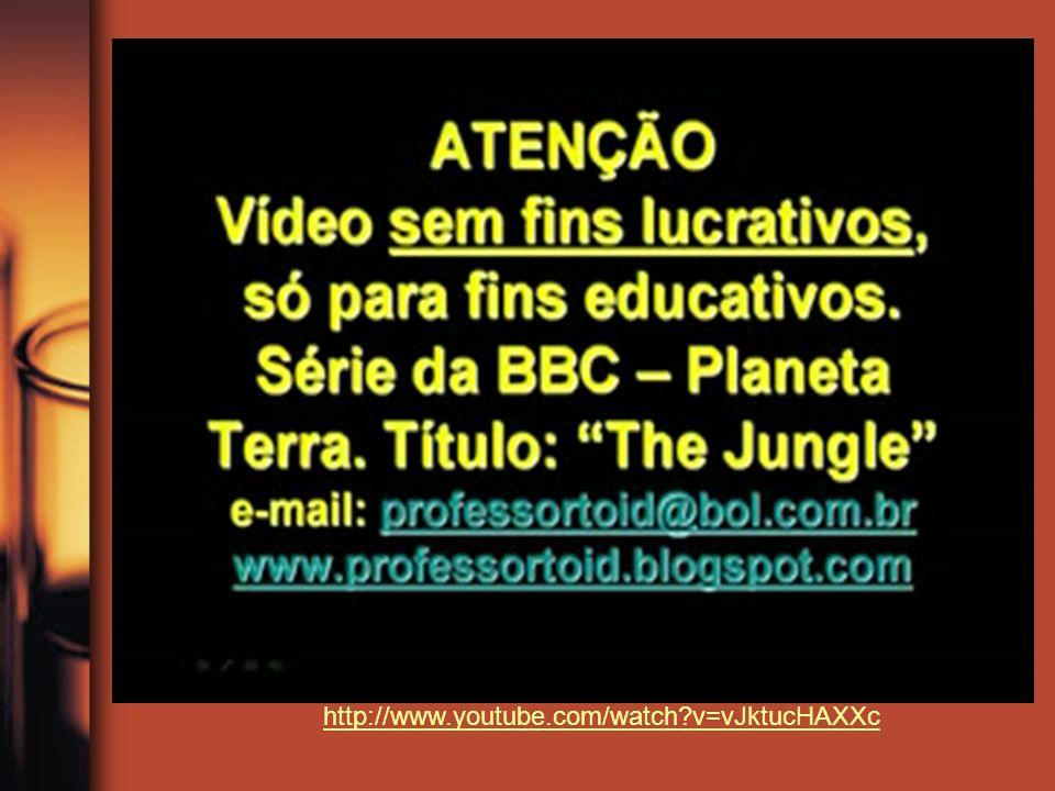 http://www.youtube.com/watch?v=vJktucHAXXc
