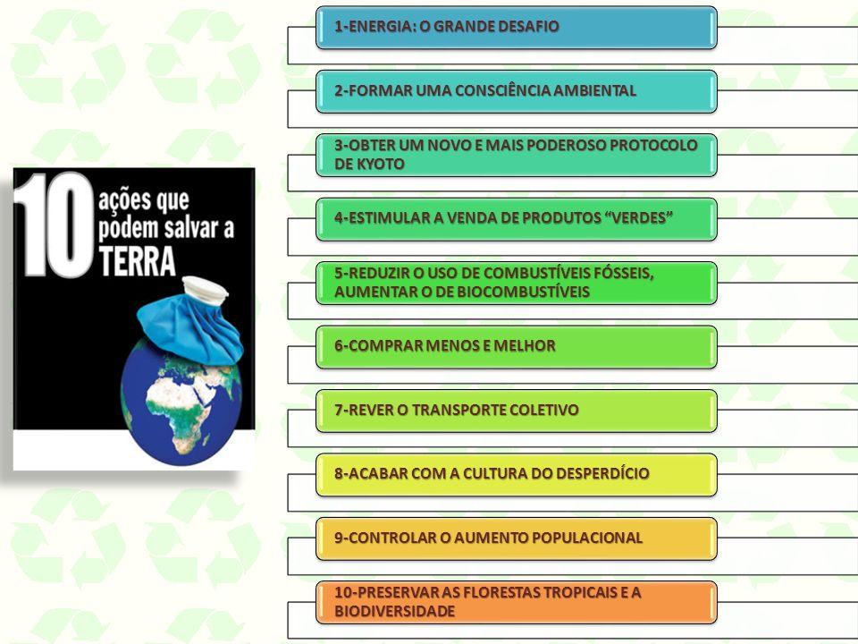 1-ENERGIA: O GRANDE DESAFIO 2-FORMAR UMA CONSCIÊNCIA AMBIENTAL 3-OBTER UM NOVO E MAIS PODEROSO PROTOCOLO DE KYOTO 4-ESTIMULAR A VENDA DE PRODUTOS VERDES 5-REDUZIR O USO DE COMBUSTÍVEIS FÓSSEIS, AUMENTAR O DE BIOCOMBUSTÍVEIS 6-COMPRAR MENOS E MELHOR 7-REVER O TRANSPORTE COLETIVO 8-ACABAR COM A CULTURA DO DESPERDÍCIO 9-CONTROLAR O AUMENTO POPULACIONAL 10-PRESERVAR AS FLORESTAS TROPICAIS E A BIODIVERSIDADE